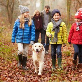25 Fall Family Fun Bucket List Activities To Do Around Stewart Ridge